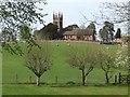 SO8286 : View to Enville Church by John M