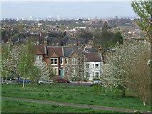 TQ3473 : Dawson's Hill, SE22 by Malc McDonald