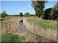 TL5258 : New Cut meets Little Wilbraham River by John Sutton