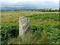 NS4582 : Standing stone on Gallangad Muir by Lairich Rig