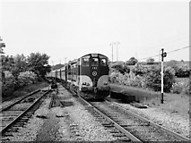 G6729 : Train at Ballysodare by The Carlisle Kid
