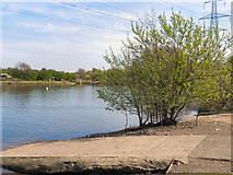 SJ8092 : Sale Water Park by David Dixon