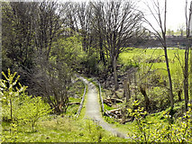 SJ8092 : Path to Cow Lane by David Dixon