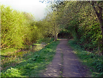 SJ8092 : Path Alongside Barrow Brook, Sale Water Park by David Dixon