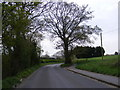 TM3978 : Bungay Road, Holton by Adrian Cable