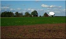 SJ7971 : Sir Bernard Lovell Radio Telescope, Jodrell Bank by Julian Osley