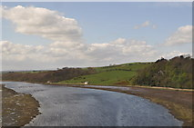 NT9953 : River Tweed by Ashley Dace