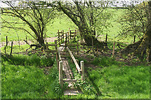 ST0007 : Cullompton: boardwalk over stream by Martin Bodman