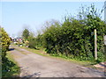TM3264 : Footpath to Bruisyard Road by Geographer
