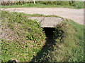 TM3361 : Gulley under the footpath to Church Farm by Adrian Cable