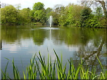 SP8633 : The lake and fountain at Bletchley Park by pam fray