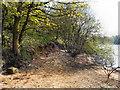 SD7314 : Jumbles Reservoir Shore by David Dixon
