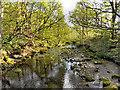 SD7313 : Bradshaw Brook by David Dixon