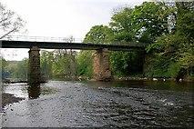 NZ3411 : Bridge over the Tees, Low Dinsdale by Mick Garratt