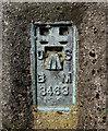 J4179 : Flush Bracket, Ballycultra Triangulation Pillar by Rossographer