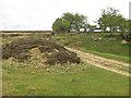SE7290 : Moorland footpath by Pauline E