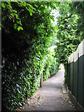 TQ3765 : Alleyway between Links View Road, CR0 and Copse Avenue, BR4 by Mike Quinn