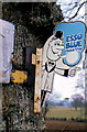 "J1966 : ""Esso Blue"" advertisement near Lisburn by Albert Bridge"