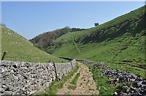 SK1482 : Cave Dale by Ashley Dace