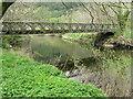 NY2425 : Bridge across the Derwent by M J Richardson