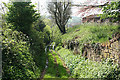 ST0005 : Cullompton: bridleway to Bradninch Common by Martin Bodman