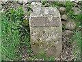 NY4432 : Township boundary marker by M J Richardson
