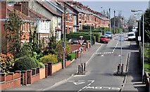 J3773 : The Orangefield Road, Belfast (2) by Albert Bridge