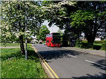 TQ3355 : Caterham:  Westway Common bus terminus by Dr Neil Clifton