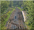 NY6949 : Kirkhaugh Station by Peter McDermott