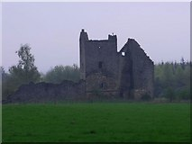 NS8384 : Torwood Castle by Robert Murray
