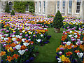 ST7475 : Dyrham House. New West Front Garden in tulip season by Rick Crowley