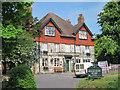TQ7811 : Hollington Oak, Hollington by Oast House Archive