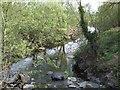 SN9890 : Afon Trannon looking downstream by John M