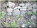 SJ5172 : Cut Mark: Manley Road, Manley by VBForever