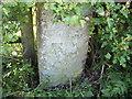 SJ5271 : Cut Mark: New Pale Road Gatepost, Manley by VBForever