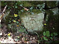 SJ5469 : Cut Mark: Nettleford Wood by VBForever