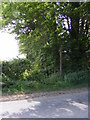 TM2866 : Footpath to Framlingham Hall & the B1116 Dennington Road by Adrian Cable