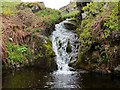 NT9611 : Waterfall on Spartley Burn by Andrew Curtis