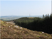J3629 : The upper boundary of Donard Wood from the slopes of Slievenamaddy by Eric Jones