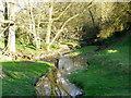 NZ2809 : Spa Beck, Croft-on-Tees by Maigheach-gheal