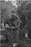 TQ2887 : Angel with ivy, Highgate Cemetery by Jim Osley