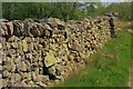 NY3425 : Drystone Wall Near Guardhouse by Mick Garratt