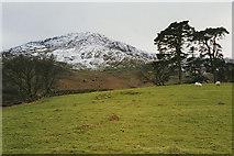 SH5848 : Field west of Beddgelert by Nigel Brown
