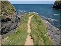 SW9880 : Path to oblivion, Pine Haven by Derek Harper