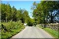 NY2422 : Road near Swinside by Anthony Parkes
