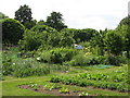 TQ3767 : Harvington Allotments, South Eden Park Road, BR3 by Mike Quinn