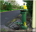 C0136 : Old water pump, Dunfanaghy by Rossographer
