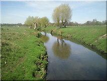 TQ2173 : Beverley Brook flowing through Richmond Park by Marathon