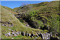 SD7397 : Uldale Gill by Ian Taylor
