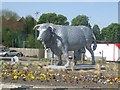 SK0933 : Bull sculpture on roundabout on Town Meadows Way by John M